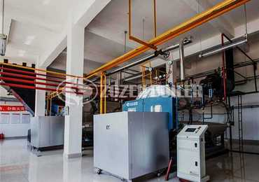 2 tph WNS condensing gas-fired boiler for feed industry