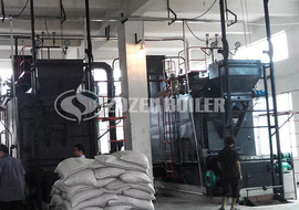 4 tph DZL biomass-fired steam boiler for feed factory