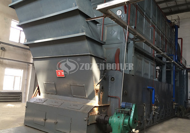 20tph SZL coal-fired steam boiler project for food industry