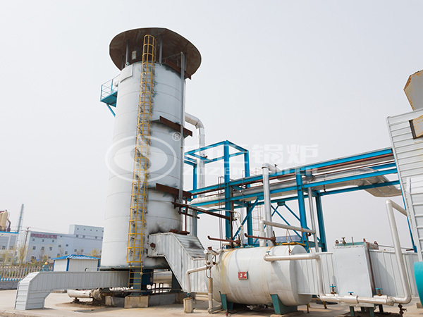 ZOZEN YQL series vertical thermal fluid heater project