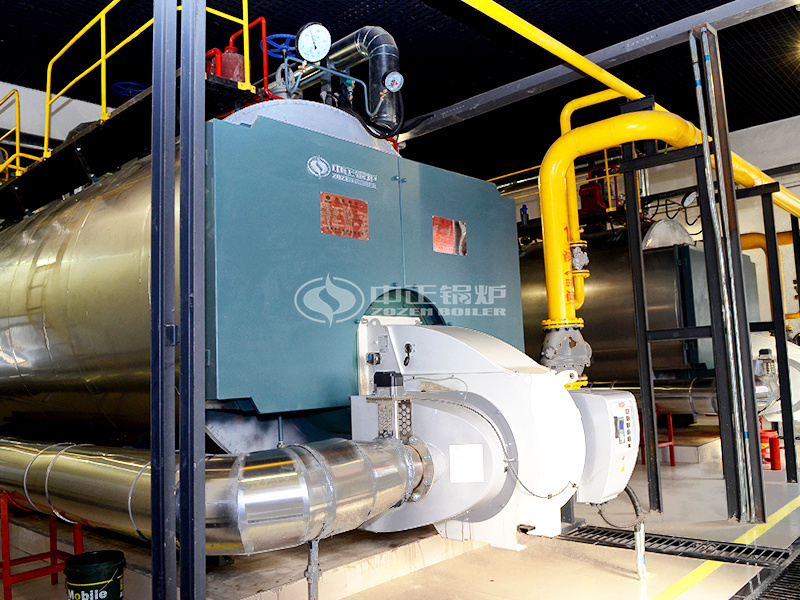 ZOZEN WNS series gas-fired steam boiler for Vinda