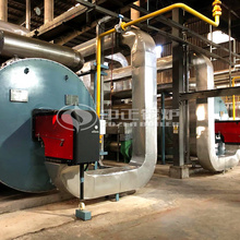 6MW YQW series gas-fired thermal fluid heater project for food industry