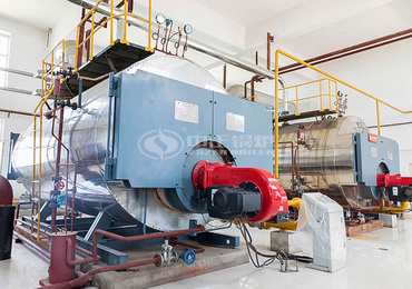 6 tph WNS series condensing gas-fired steam boiler for battery industry