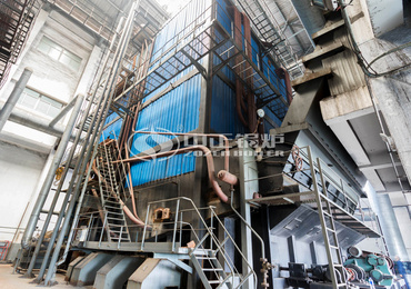 Large coal-fired reciprocating grate hot water boiler heating industry (58MW DHW series)