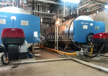 10 tph WNS series gas-fired steam boiler project for electronics industry