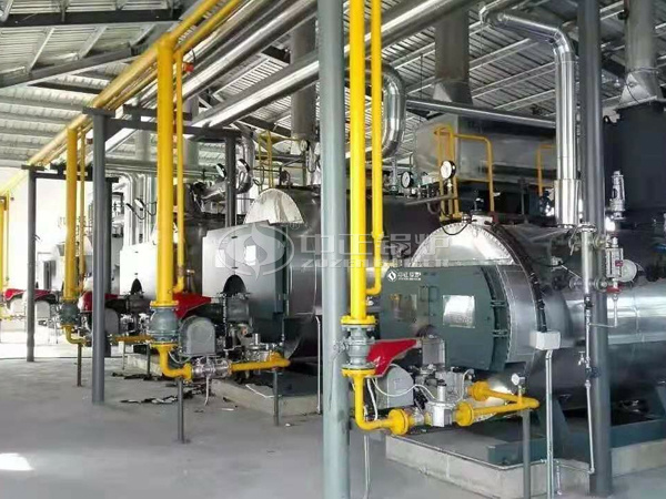 ZOZEN WNS series gas-fired boilers for Shanghai Flower Port