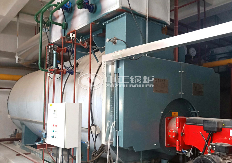 10 tph WNS series condensing gas-fired steam boiler for biomedical park