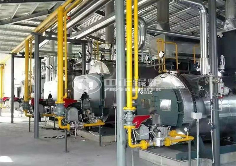 2.8MW WNS series condensing gas-fired hot water boiler for heating industry