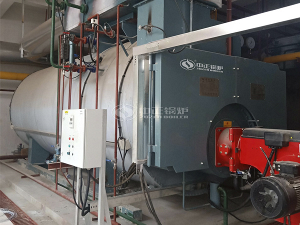 ZOZEN WNS series low NOx boiler for Lingkong Biomedical Park