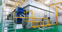ZOZEN safe and efficient gas-fired steam boilers support the development of dairy enterprises