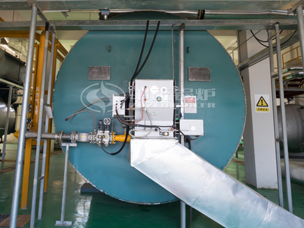 YQW series thermal fluid heater for Xinheng New Materials