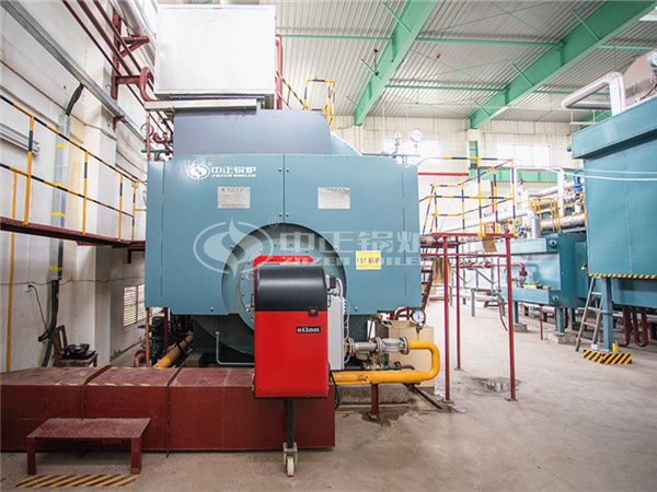 ZOZEN WNS gas-fired steam boiler for No.3533 Printing Dyeing and Clothing Co., Ltd.