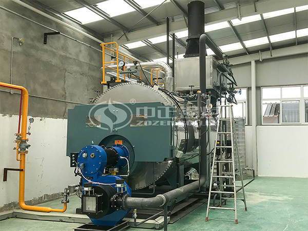 ZOZEN WNS series gas-fired stean boiler for Duoyuan Bichemistry