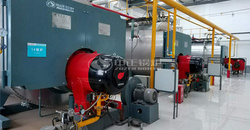 ZOZEN gas-fired boilers provide high-quality and efficient steam for fruit and vegetable juice production lines