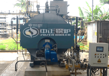 2 tph WNS series condensing gas-fired steam boiler for packaging industry