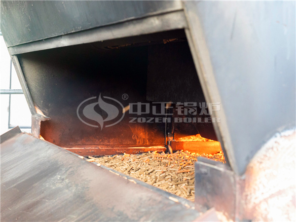 Biomass particles entered into the boiler furnace