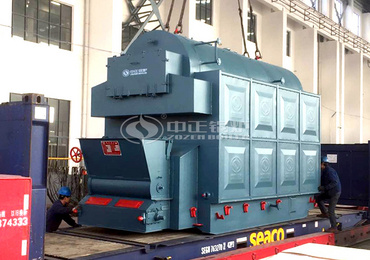 4 tph DZL series chain grate steam boiler for the feed industry