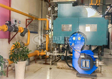 2 tph WNS series condensing gas-fired steam boiler for the cashmere industry