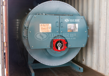 0.7MW WNS series gas-fired hot water boiler for German GOTEC Group