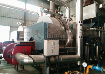 6tph WNS series three-pass gas-fired steam boiler project for the feed industry