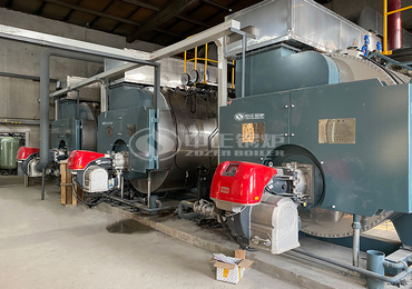 6 tph WNS series two-pass gas-fired steam boiler project for the food industry
