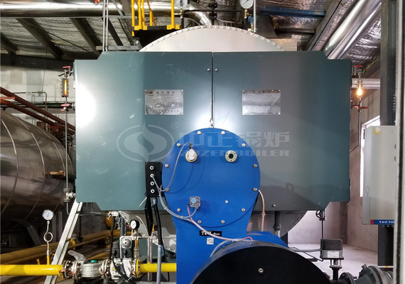 10 tph WNS series condensing gas-fired steam boiler project for agriculture industry