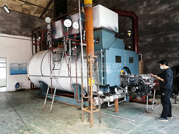 ZOZEN successfully ignited the WNS series gas-fired steam boiler for Jinxilong Food