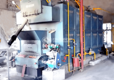 4tph DZL series biomass-fired packaged steam boiler project for photovoltaic industry