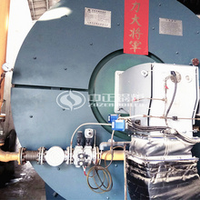 4 million kcal YQW series gas-fired horizontal thermal oil heater for water purification industry