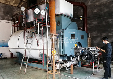 6 tons WNS series gas-fired steam boiler project for the food industry