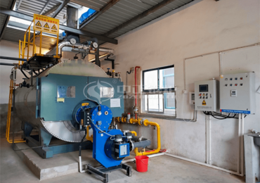 2tph WNS series three-pass condensing gas-fired steam boiler project for the food industry