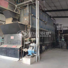15 tph DZL series biomass-fired tri-drum steam boiler project for the food industry