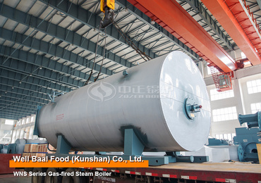 4 ton/hr WNS series three-pass gas-fired steam boiler project for food industry