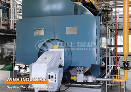 12 Tons Two-pass Gas-fired Steam Boiler for Wine Industry