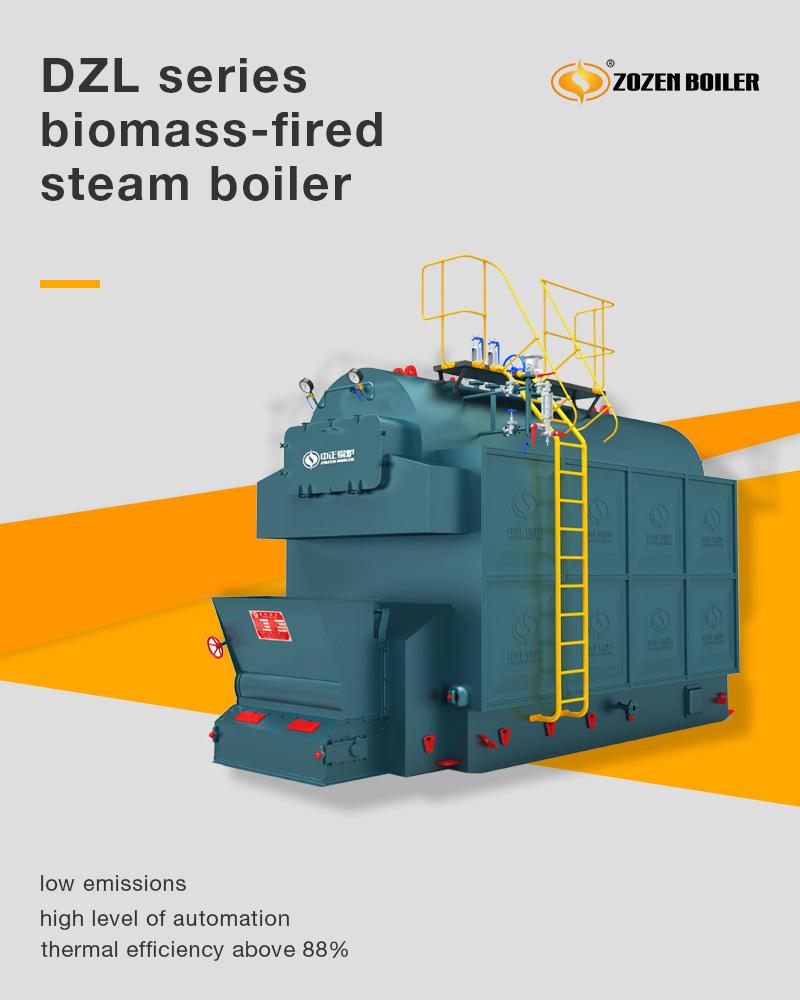 DZL series biomass-fired steam boiler - Biomass-fired boilers ...