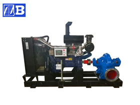 Diesel Engine Split Case Pump