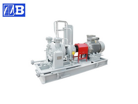 Centrifugal Processing Oil Pump