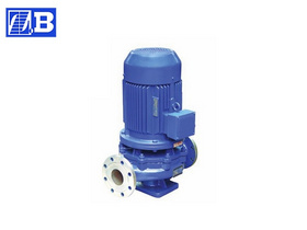 Vertical Inline Chemical Pump