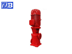 Vertical Jockey Fire Pump