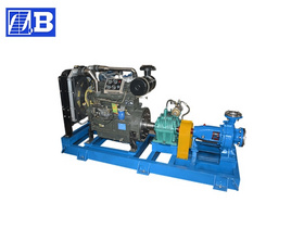 Diesel Engine Singe Stage Pump