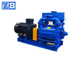 Water-ring Vacuum Pump (2BE)