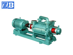 Water-ring Vacuum Pump (SK)