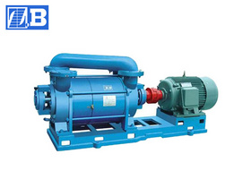 Water-ring Vacuum Pump (SZ)