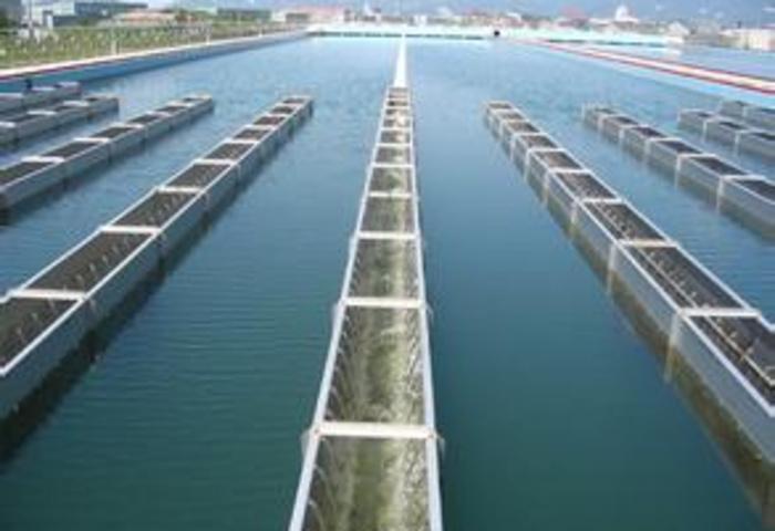 哈尔滨自来水公司