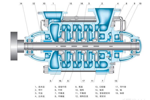 DF型不锈钢多级泵结构图