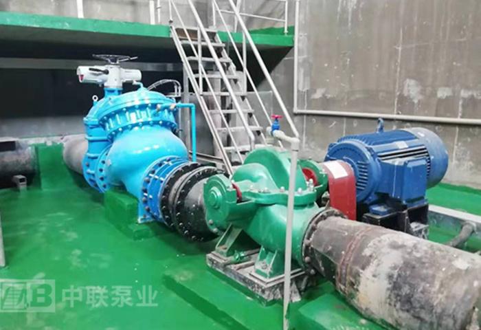 湖南嘉原景观宁远分公司SAP型水平中开双吸泵