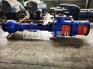 LCM型耐磨长轴泵