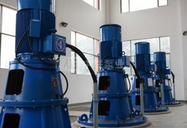 湖南某自来水厂采购6台立式长轴泵
