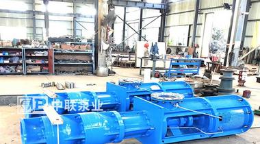 南京某电气公司采购2台立式长轴泵