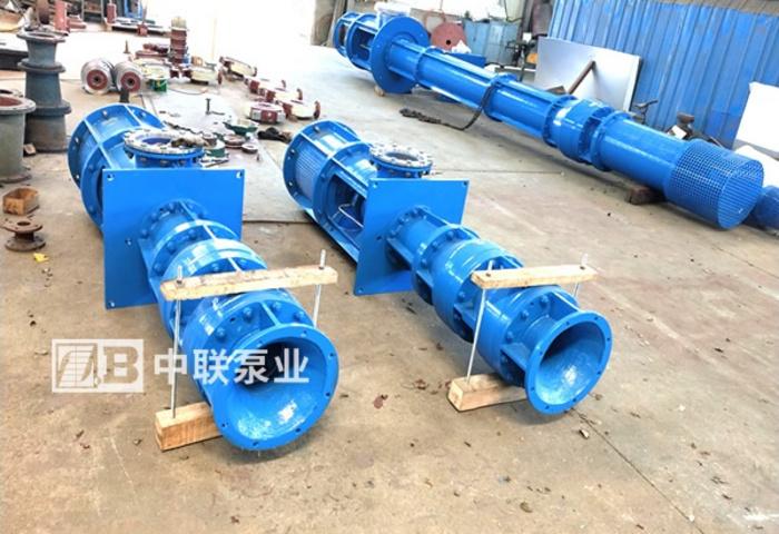 西安联力科技采购1台长轴泵